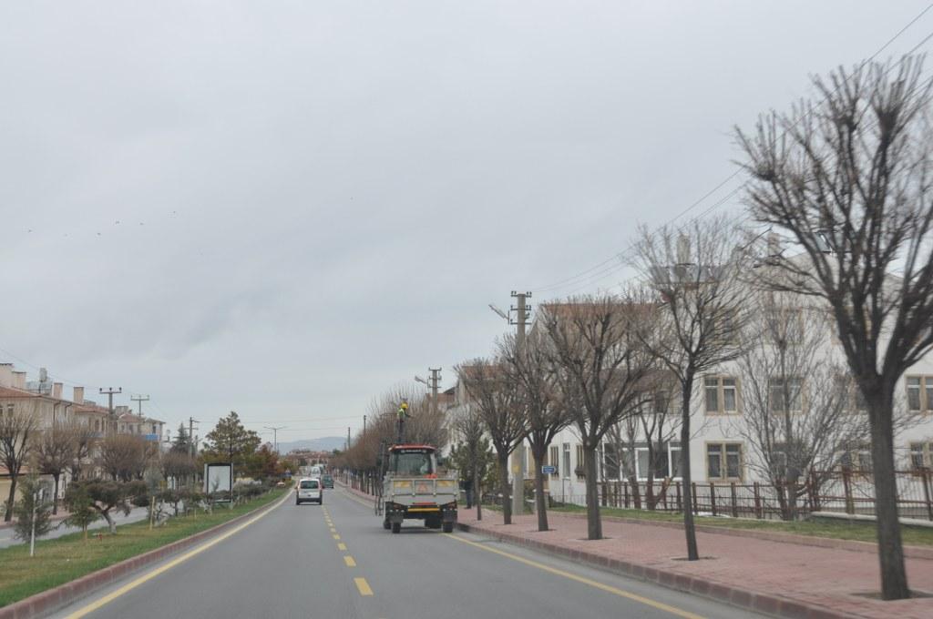 Ürgüp Belediyesi ağaçları buduyor