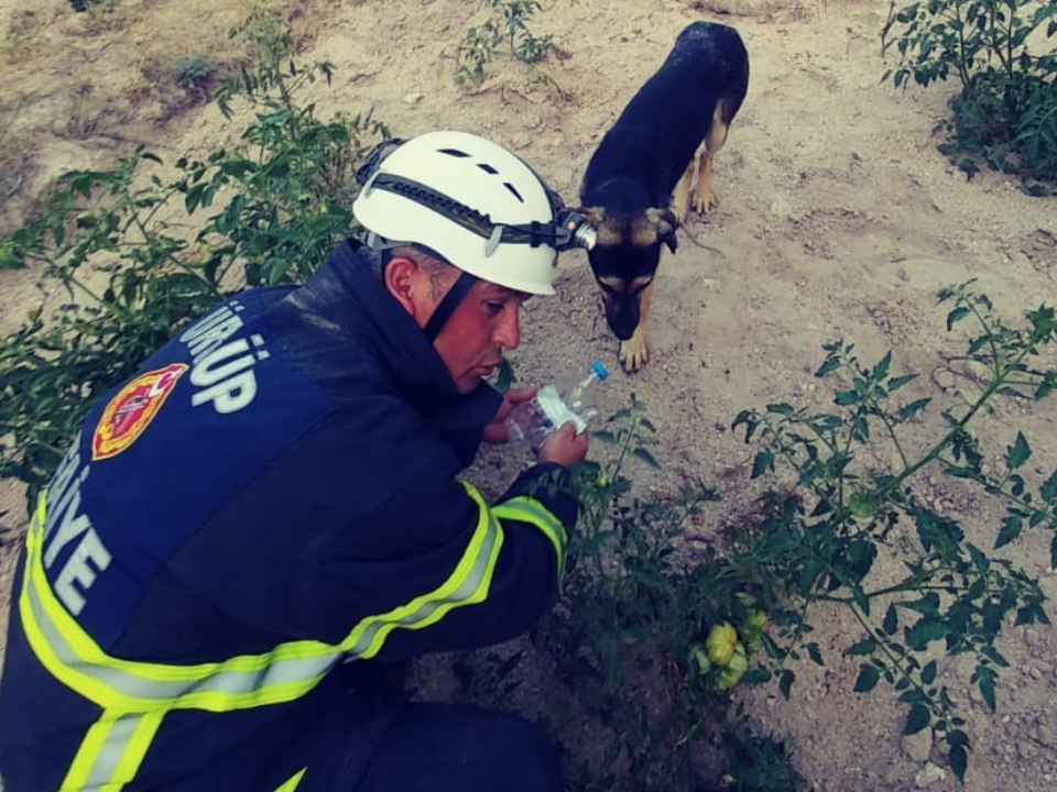 Ürgüp İtfaiyesi Kuyuya düşen Köpeği Kurtardı